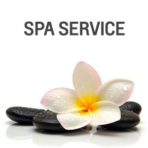spa-service1